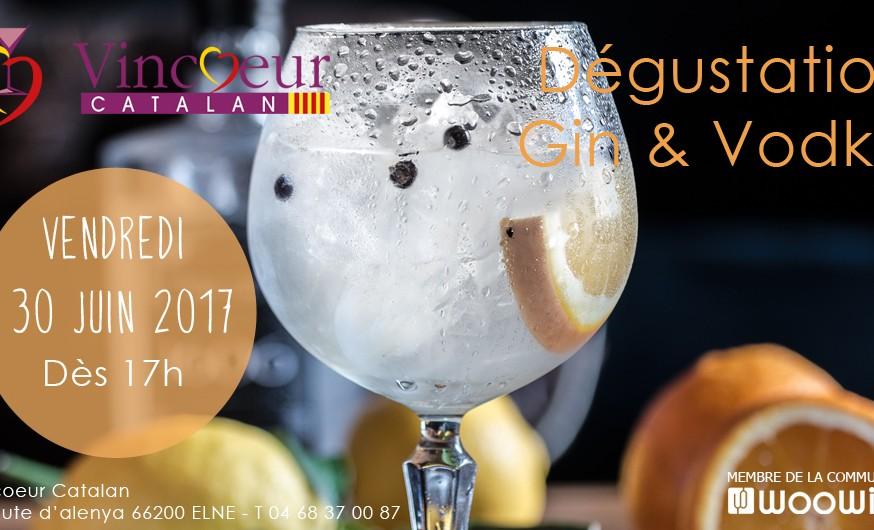 vincoeur_dégustation_gin_vodka